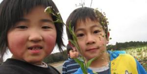 園の周りには、たくさんの草花や虫たちがいます
